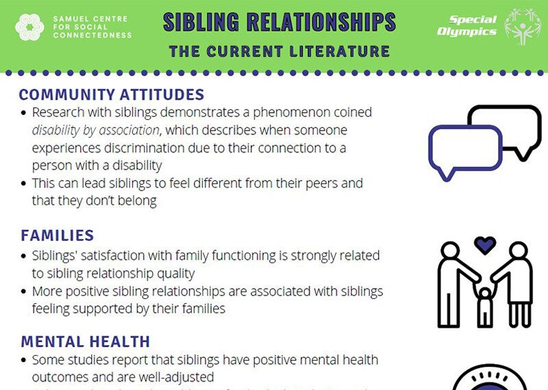 image of the Sibling Relationships: The Current Literature document