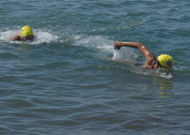 Open Water Swimming Banner