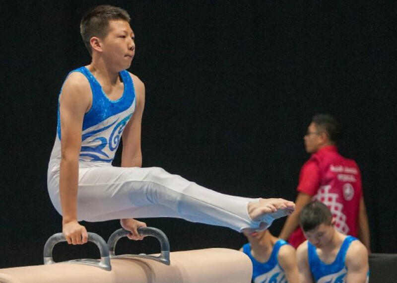 Young man performing on the pommel horse.