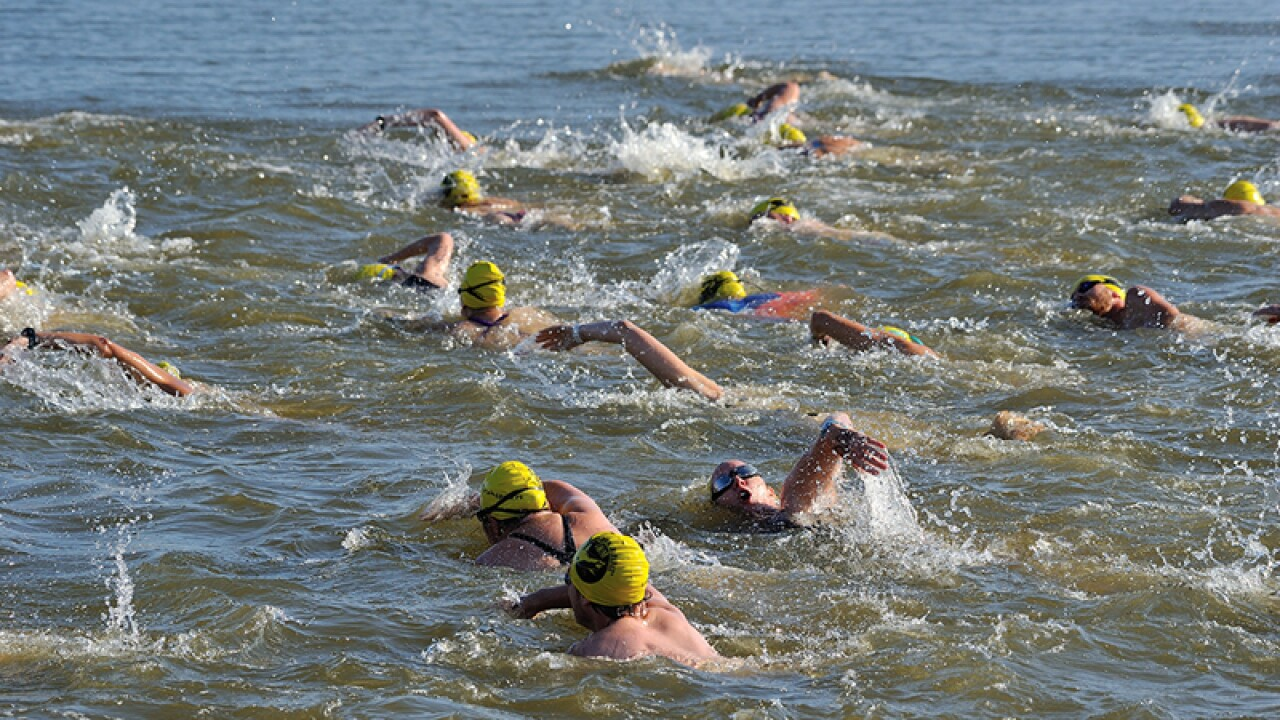 A large group of athletes swimming in open water.