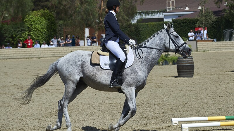 An athlete riding a horse during an equestrian event at Special Olympics World Summer Games Los Angeles 2015