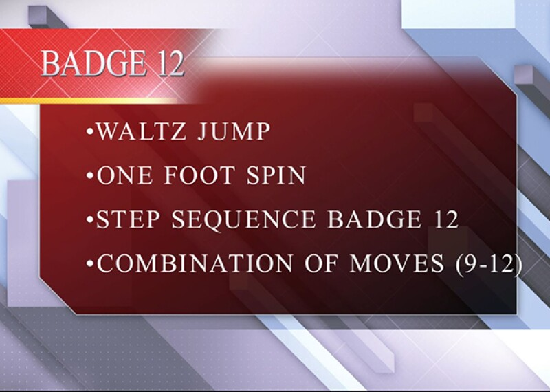 Badge 12.JPG