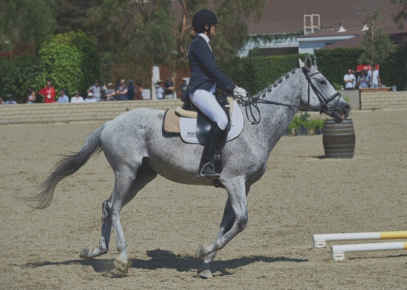 Athlete riding a horse in the performance ring.