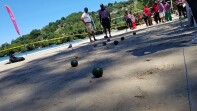 A group of athletes playing bocce on the beach in Trinidad. An audience is forming and officials are conversing. A game of volleyball is being playing in the background.